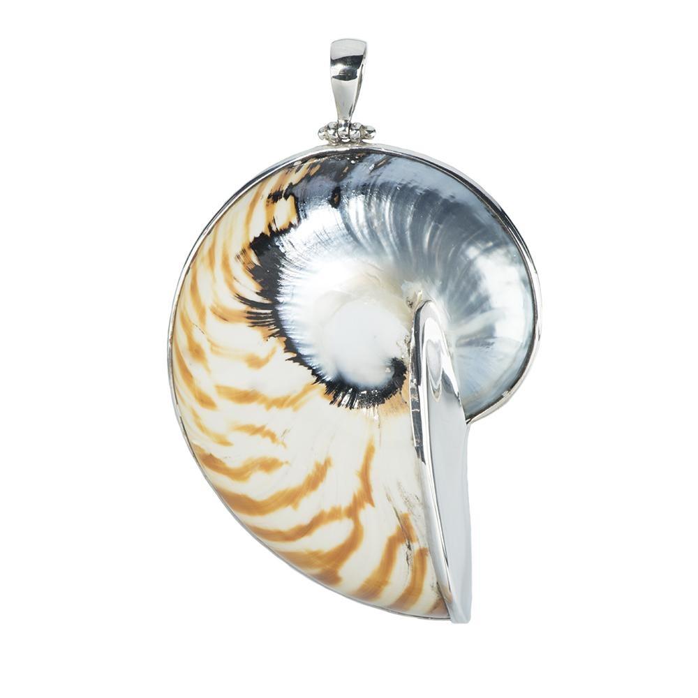 Natural Zebra-Color Resin Nautilus Silver Pendant -6cm