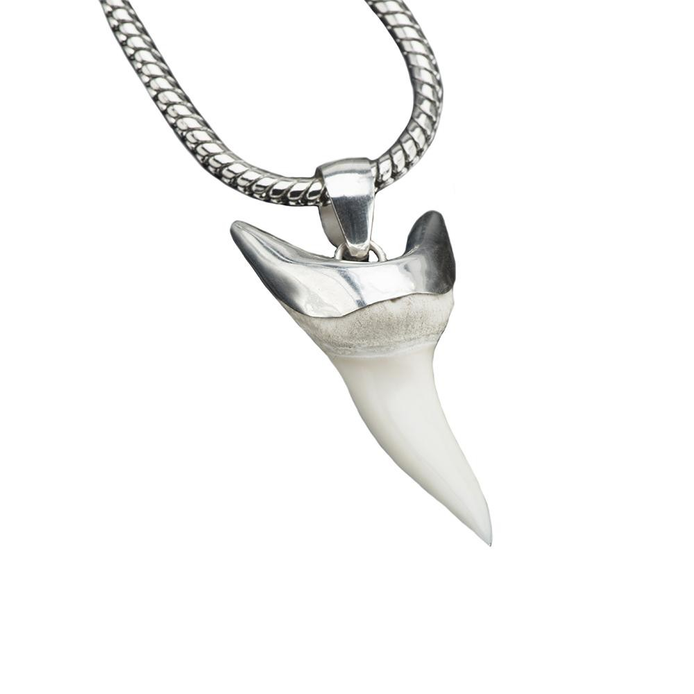 Shark Tooth Silver Pendant