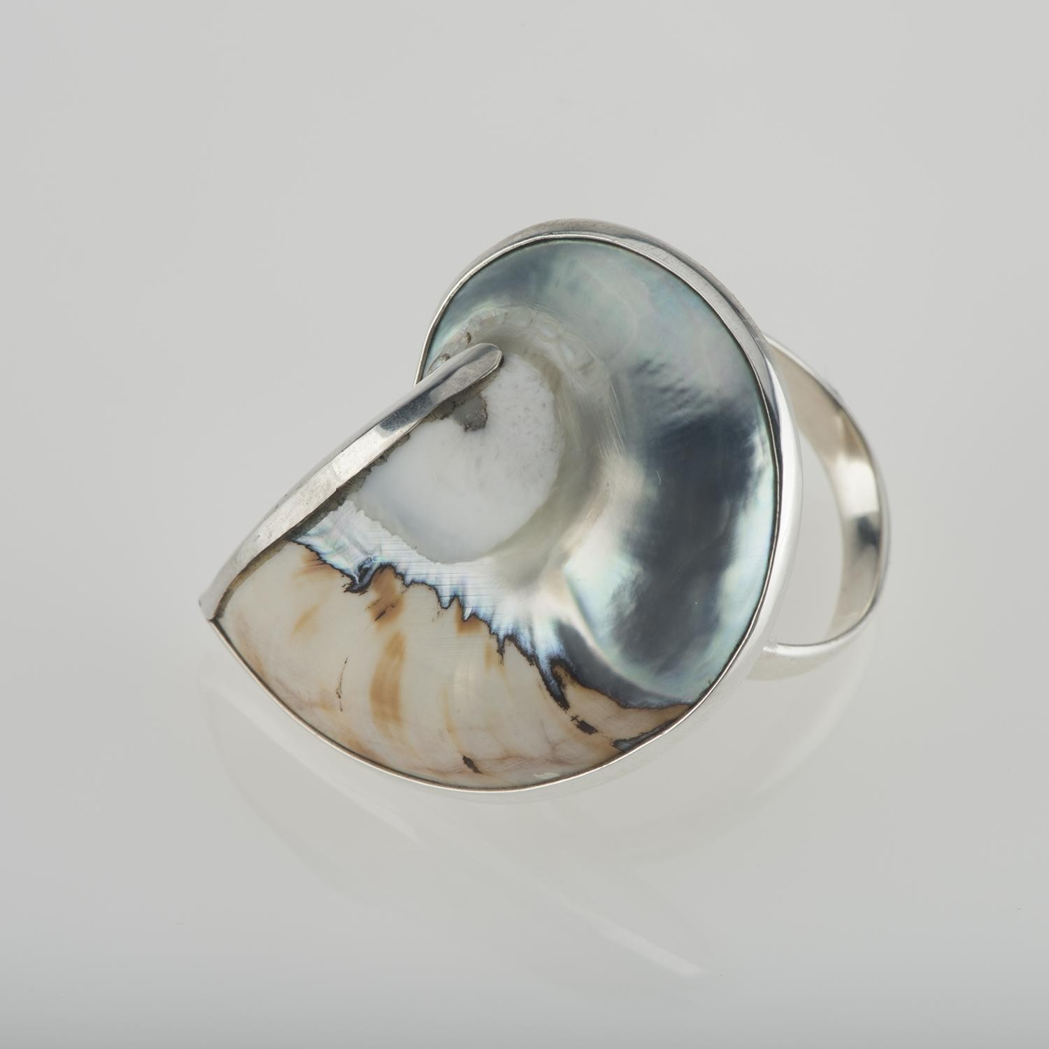 Natural Zebra Nautilus Ring